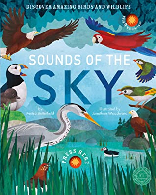 Sounds of the Sky by Moira Butterfield