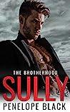 Sully (The Brotherhood, #3)