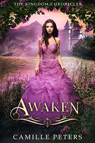 Awaken (The Kingdom Chronicles #7)