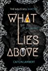 What Lies Above