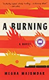 Book cover for A Burning