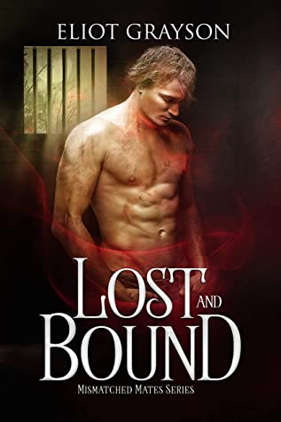 Lost and Bound (Mismatched Mates, #4)