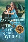 The Look of a Storme (The Storme Brothers, #3)