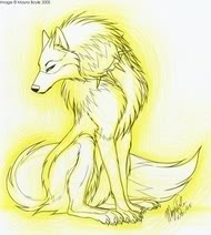Light Wolf Pictures, Images and Photos