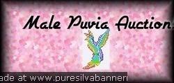 Male Puvia 4 auction bannar