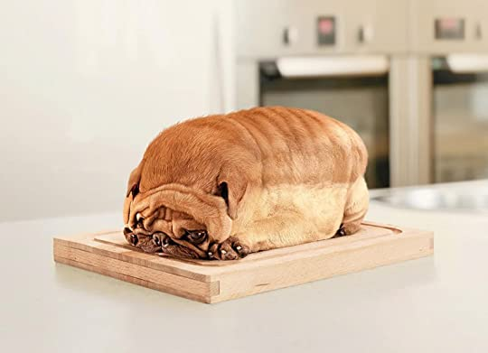 LOAFDOG Pictures, Images and Photos
