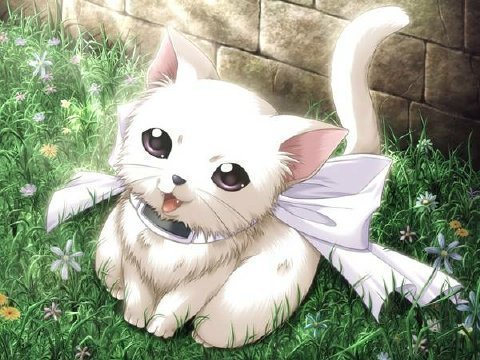 Warrior Cats: Awaiting Danger/Skyclan: Rejoining the Clans