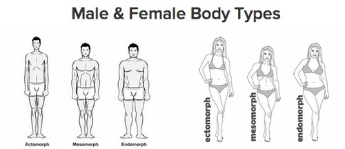 Character Resources - Physical Features: Body Types/Shapes