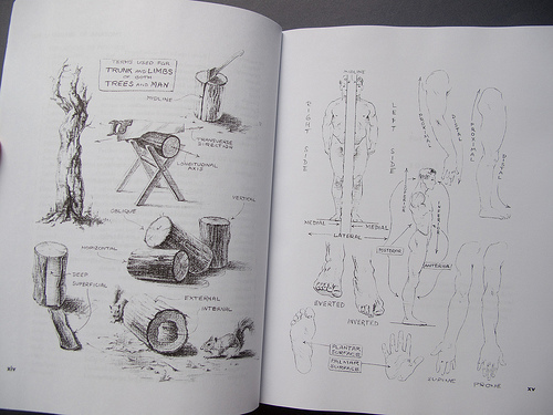 Parka (Singapore, 00, Singapore)\'s review of Atlas of Human Anatomy ...