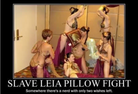 thumb-Slave_Leia_Pillow_Fightv2