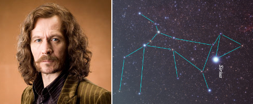 Sirius Black and Canis Major