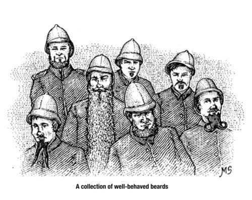 an illustration of a collection of well-behaved beards