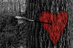 Shot through the heart