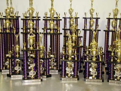 Jennifer Egan's trophy case (approximation)