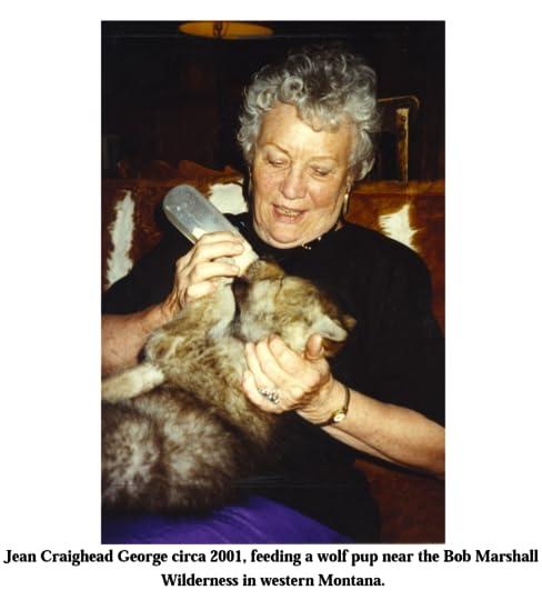 George feeding baby wolf cub
