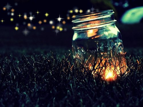 photo Fireflies_zps3915efb1.jpg