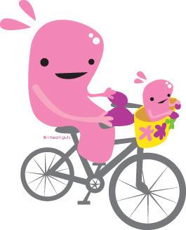 Uterus on a bike