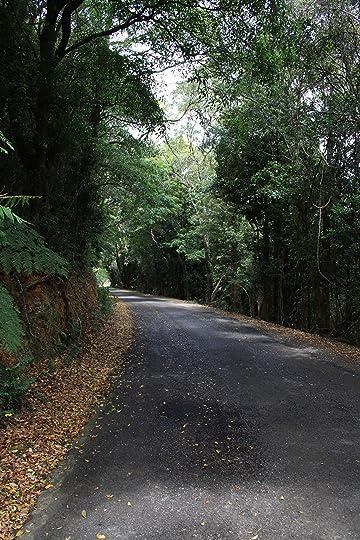 Jellicoe Road 2
