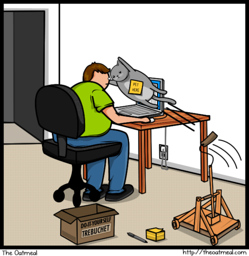 Cat vs. Internet: trebuchet cat