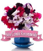 Mrs Condit Recommends photo mrscrecommends2_zps98e844fe.jpg