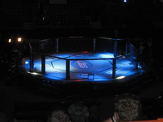 Cage fight photo: ufc cage IMG_0685.jpg