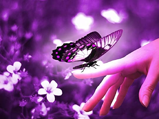 photo butterfly_zpsd76053de.jpg