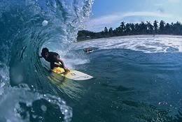 Surfing photo: surfing surfing.jpg