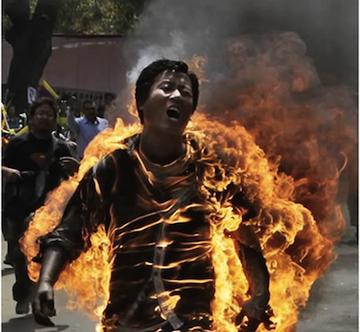 self immolation essay