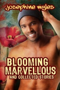 Blooming Marvellous cover