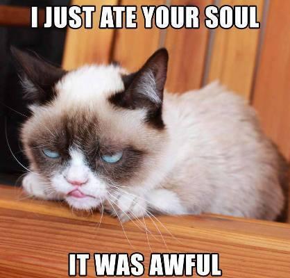 photo Grumpy_Cat_013_zpse75b2cdd.jpg