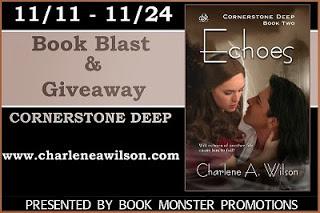 http://tometender.blogspot.com/2013/11/charlene-wilsons-echoes-book-blast.html