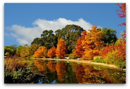 photo autumn2_zps9aee7d53.jpg