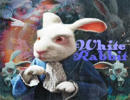 White rabbit photo: White Rabbit (blend) blend_rabbit-pronta-1.jpg