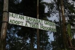 program adopsi pohon (sumber : toscasantoso.tumblr.com)