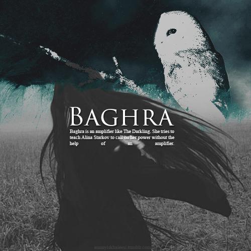 Image result for baghra grisha