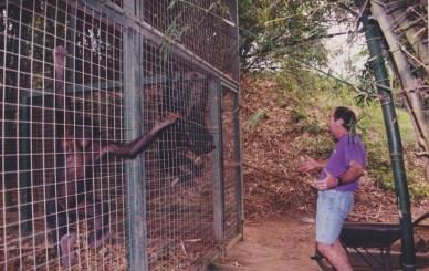 Mel and Bonobos