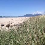 Beautiful Pacific Beach