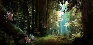 photo forest_zps144a8503.jpg