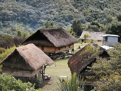 Native Papuan Village