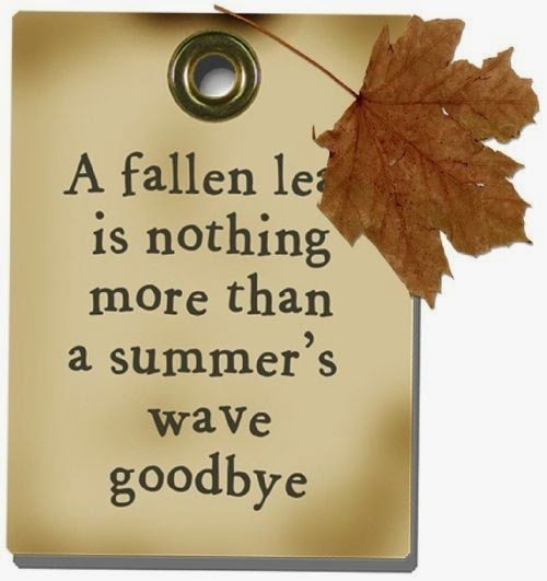 Audry Fryeru0027s Blog   U0026quot;Fallu0026quot; In Love With Autumn: Ten Quotes/Sayings!    September 22, 2014 09:26