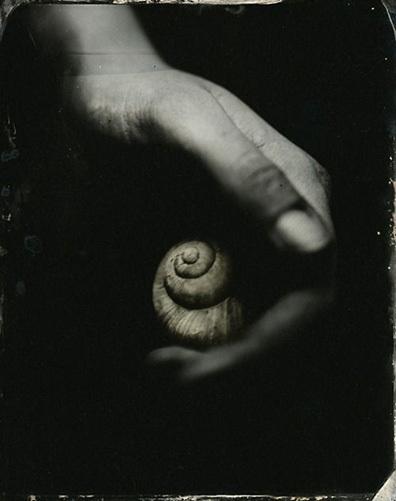 photo seashellinhand.jpg