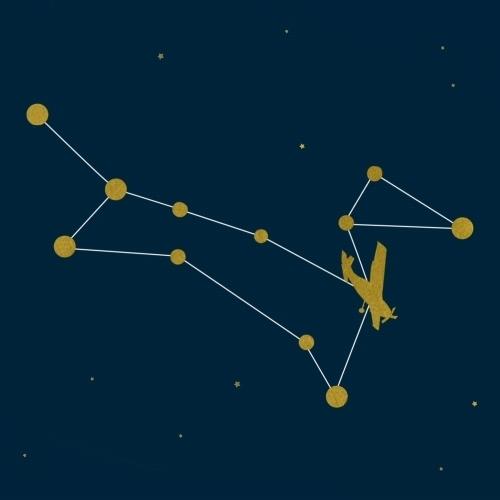 Dog Stars