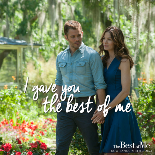 The Translation Abbey's review of The Best of MeThe Translation Abbey's review of The Best of Me - 웹