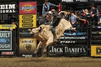 What to expect when hookup a bull rider