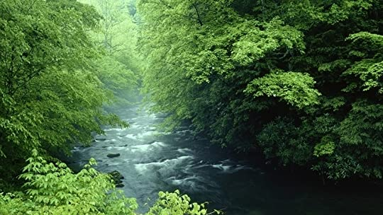 photo tennessee rivers national park great smoky mountains 1920x1080 wallpaper_www.wallpaperhi.com_24.jpg