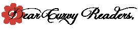 Dear Curvy Blogger