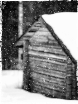 photo winterpuse8_zps0rnen63z.jpg