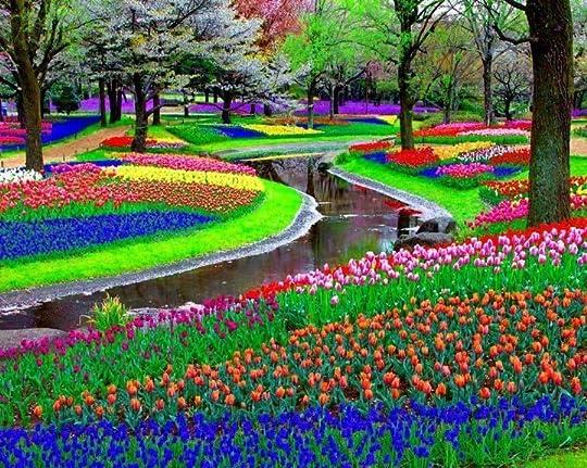 colorful park
