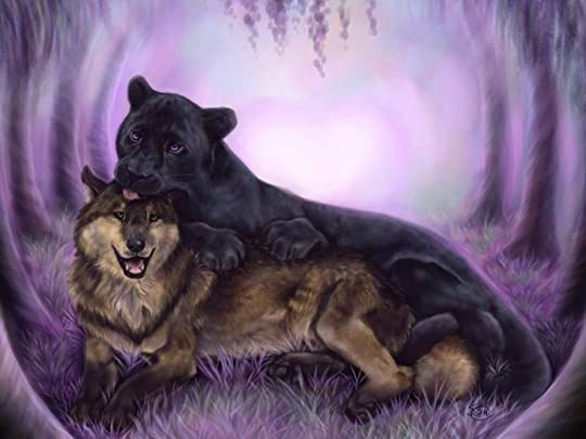 wolf and panther - Google Search