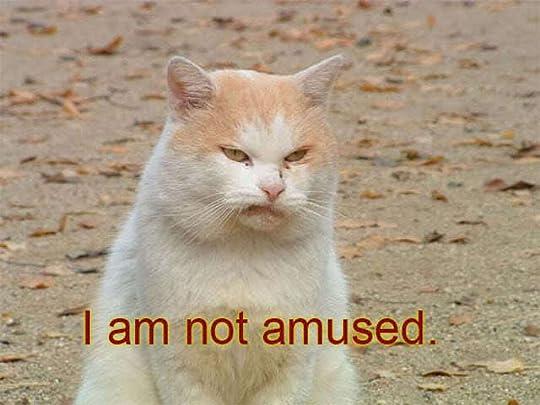 i am not amused photo: amused amused.jpg